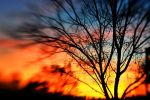 Lensbaby Sunset III by LDFranklin