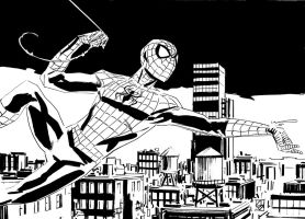 Spidey by deankotz