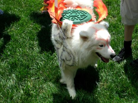 Okami outside Otakon 2011 by morgoththeone