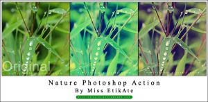 Nature Photoshop Action by miss-etikate