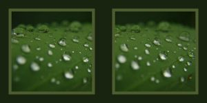 water drops stereoscopic by pwg