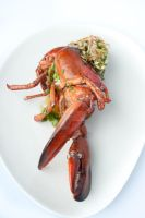 Lobster dish by Hopscotchbaby