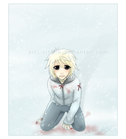Blood in the snow by cindre