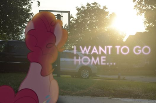Home by Oppositebros