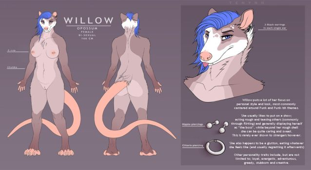 Willow reference sheet by Tenynn