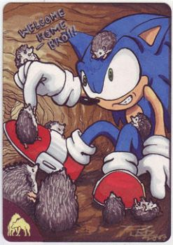 Welcome home Sonic by britbrakdown