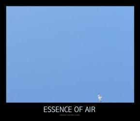 Essence of air by rivieh