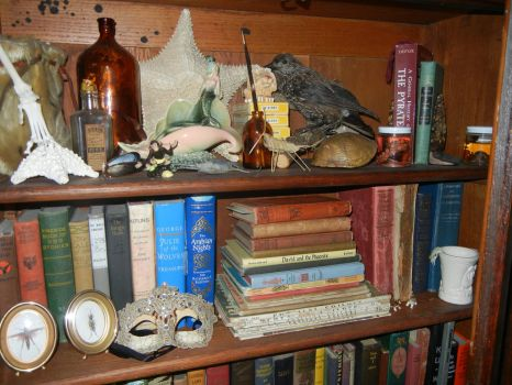 My treasured collection of books by modastrid