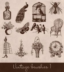 vintage brushes by Etoile-du-nord