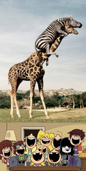 Loud Kids' Reaction To Zebra Riding a Giraffe by EKJr
