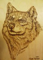 Wood burn wolf by alisehansen