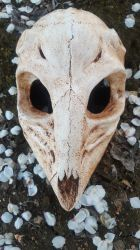 Deer Skull Mask by meanlilkitty