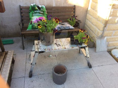 Planter 1 Crome by Cooper31