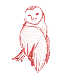 sketchtober day 2: owl by punkucats