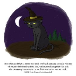 A Fantastically False Fact About Cats by Zombie-Kawakami