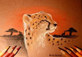 African sunset by AlviaAlcedo