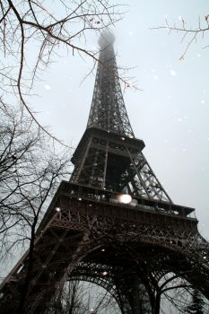 Paris In Winter by Janelle-Janelle