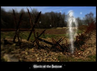 Manip - Ghosts of the Somme by MauserGirl