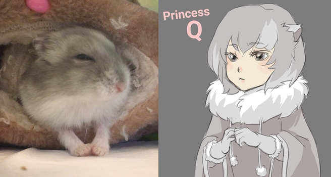 if my hamster was a human, she'd be a princess by sketchi