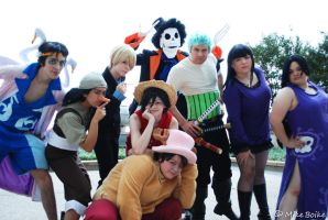 Animefest 2012: One Piece of Awesome by Malindachan