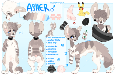 Asher Ref 2018 by anxviety