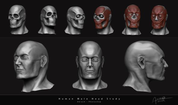 Male Head Study by Ahmed-Taher
