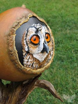 Hoot Hoot in a gourd angled by ART-fromthe-HEART