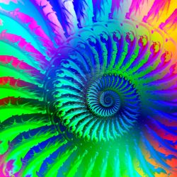 psychedelic fractal by photographybypixie