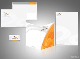 Deniz Co. letterhead design by behzadblack