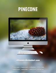 Pinecone by etcoman
