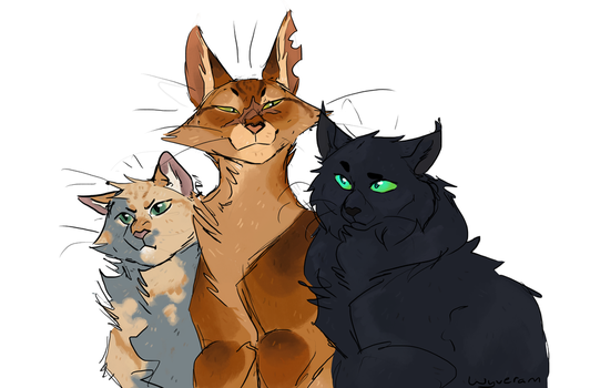 Cats by Wyveram