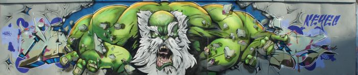 NeyeC and Daddy Hulk smash by NEYEC