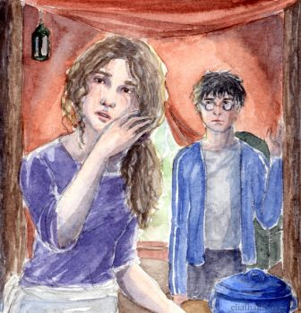 Deathly Hallows - chapter 16 by DrawnSeawards