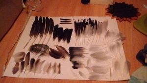 My entire feather collection by Deertine