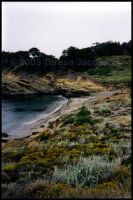 Big Sur Cove 3 by kalany