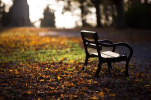 Lonely Bench by Captain-Marmote