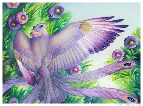 Birdflowers: Aster - September by windfalcon