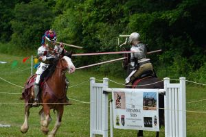 Jousting Knights 2 by 5bodyblade