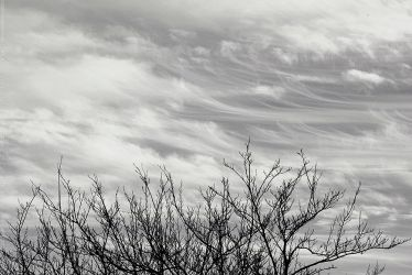 Art in the Skies by SheilaMBrinson