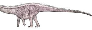 Brontosaurus excelsus by ZEGH8578