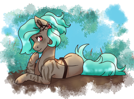 Soft Tea-Leaf Rays by Points-for-Fritty