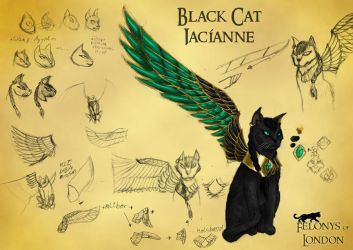 Black Cat Jacianne by Lhugion