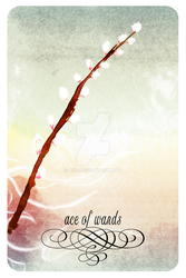 Ace of Wands by arie