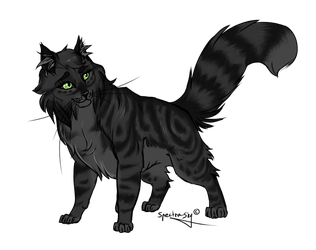 15. Willowshine by Spectra-Sky