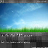Grass and Sky wallpaper by darpan-aero