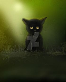 Sad Kitty by Truley-Unruly