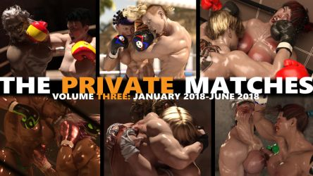 Now on lulu.com: The Private Matches, Vol. 3! by AFCombat