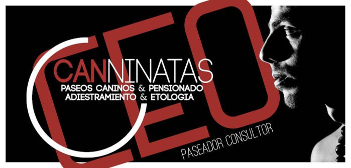 CEO Canninatas by Onalem