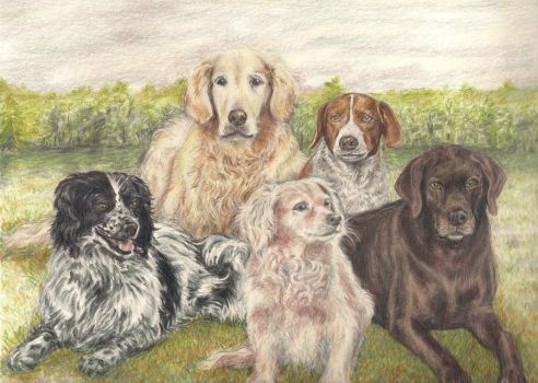 5 dogs by EclecticCalico