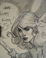 Shanna Detail SDCC 2011 by TerryDodson